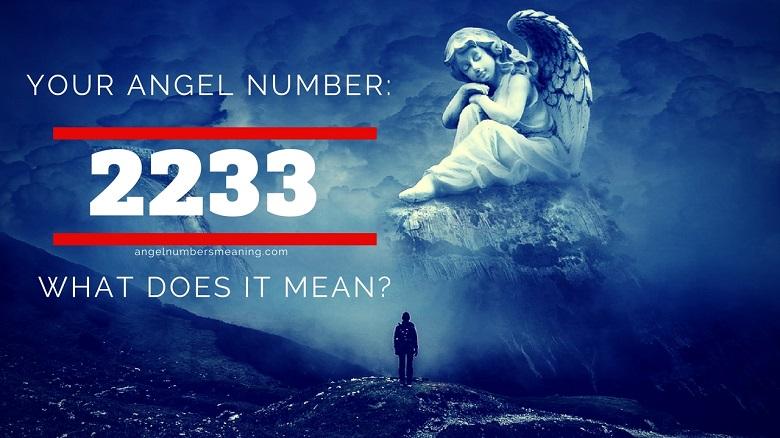 2233 Angel Number
